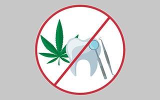 Patient Information Bulletin: Cannabis and Dental Procedures